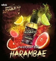 12 Monkeys 30ml HARAMBAE 80VG (Zitrusfrüchte, Guave) - E-Liquid made in CANADA