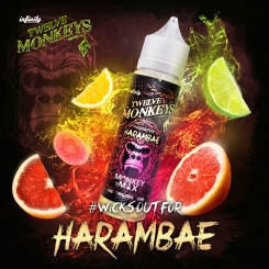 12 Monkeys 50ml HARAMBAE OVERDOSED - E-Liquid made in CANADA